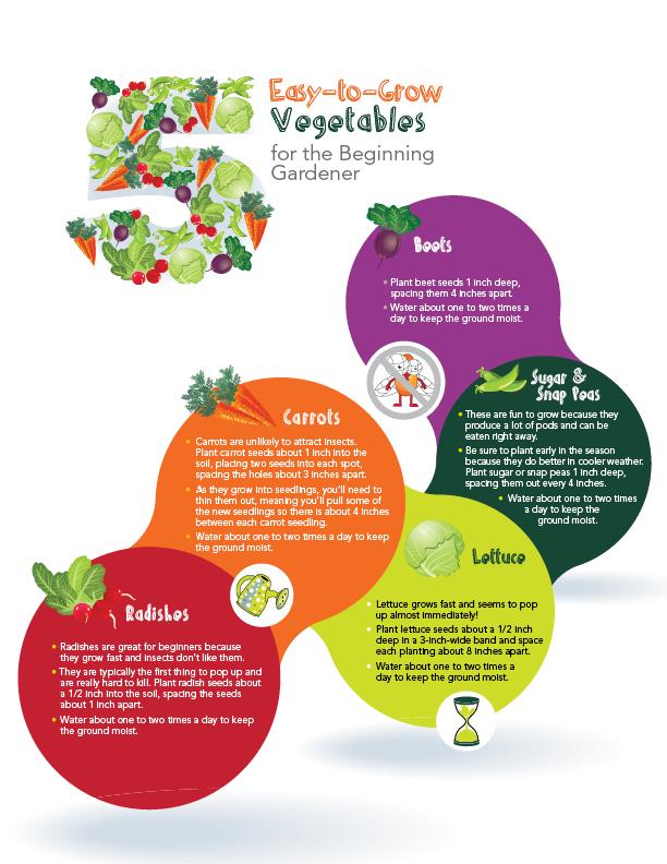 5 Easy-to-Grow Veggies